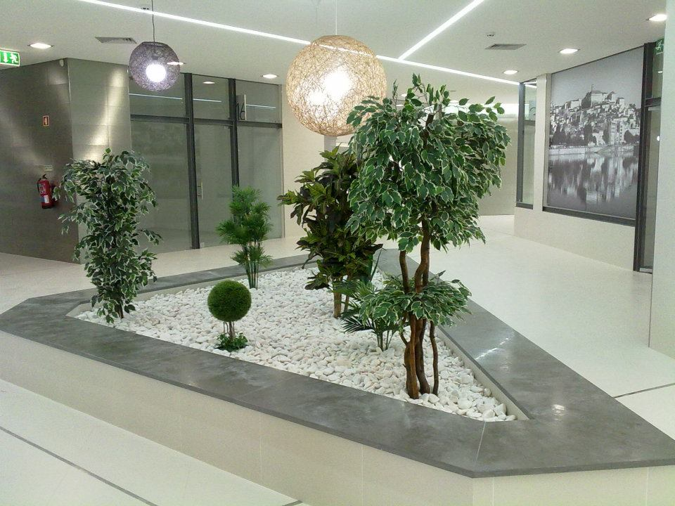 Plantas para jardins interiores v rias - Jardin de interior ...